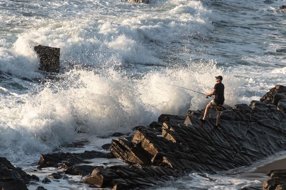 Vissende visser